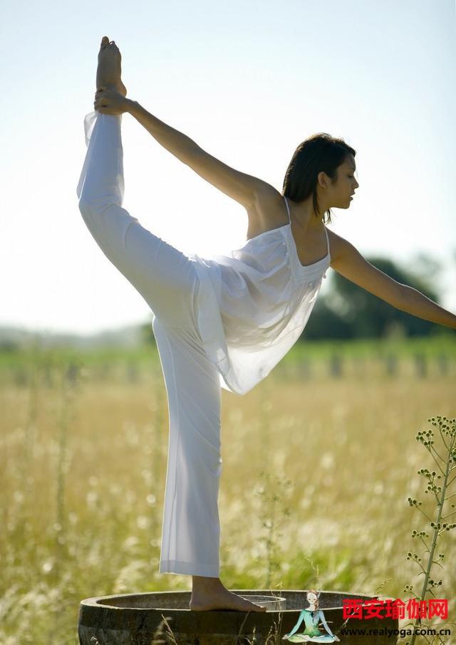瑜伽初入门该练习好哪些瑜伽体式动作?