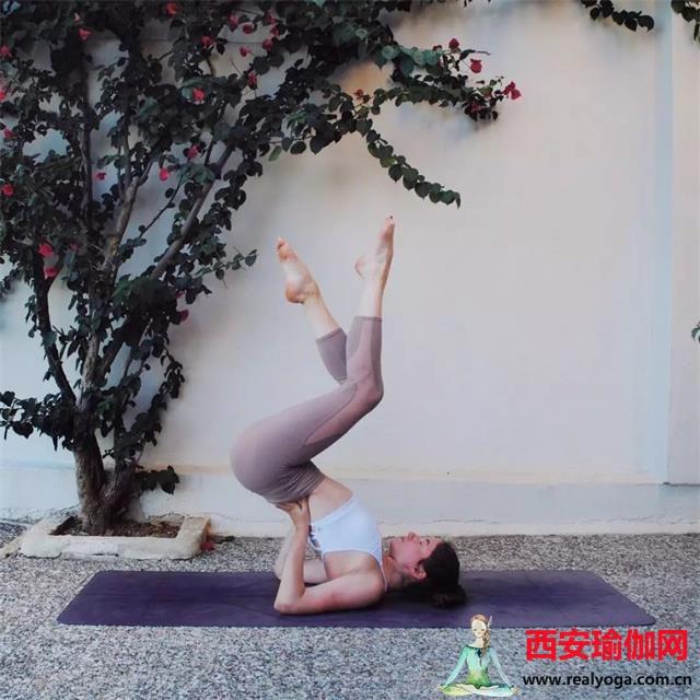 坚持练习瑜伽入门基本动作,让你的身形更挺拔!