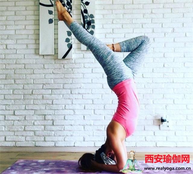 冬天健身还是选择瑜伽吧,在家也能练